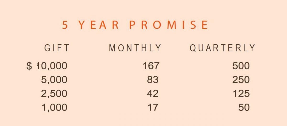 Alumni Promise - 5 Year Breakdown